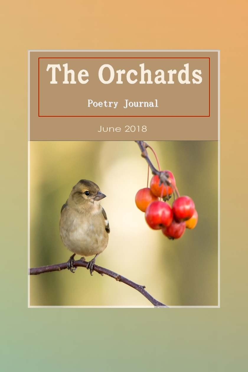orchards cover june 2018 summer